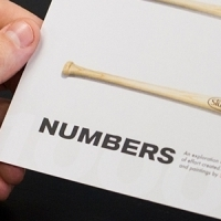 Numbers Flyer